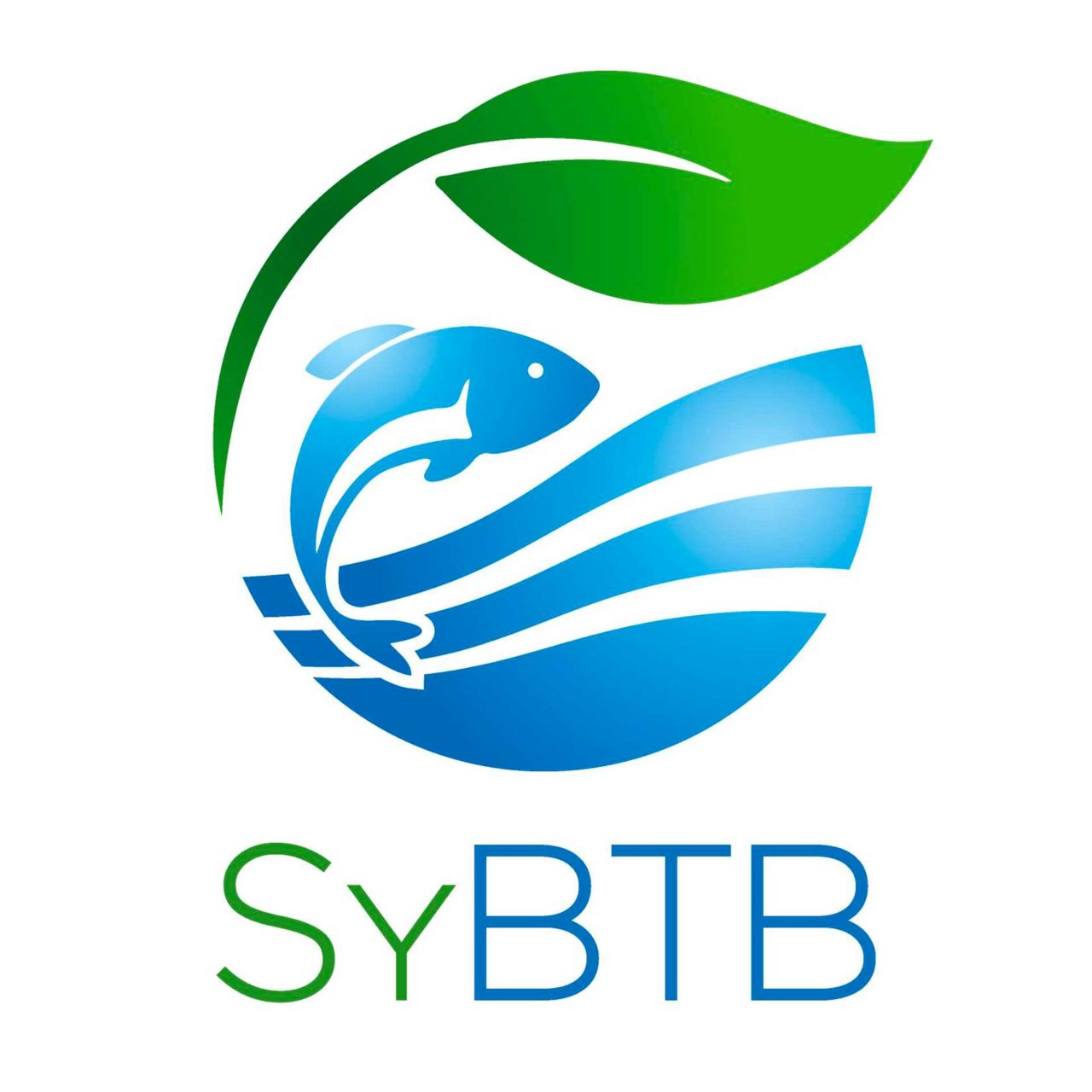 Logo SyBTB